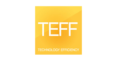 TEFF Technology Efficiency