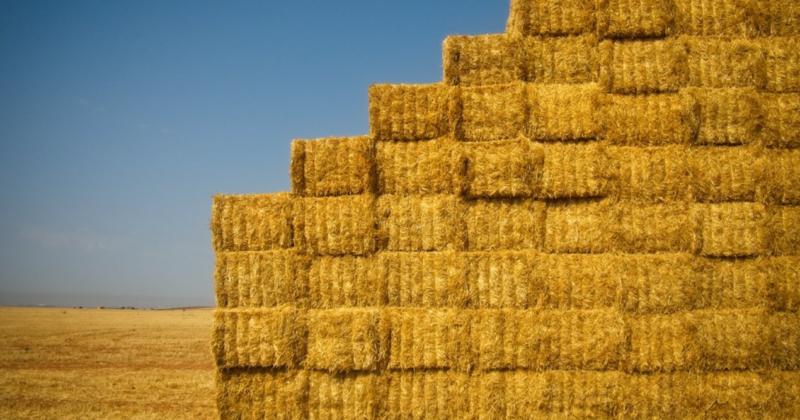 Аналіз бар'єрів для виробництва енергії з агробіомаси в Україні