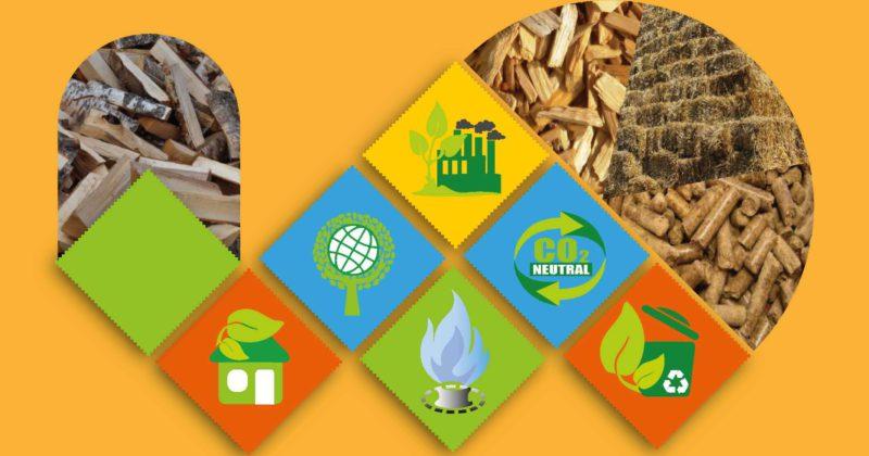 Посібник «Підготовка та впровадження проектів заміщення природного газу біомасою при виробництві теплової енергії в Україні»