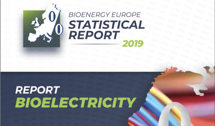 Виробництво електроенергії з біомаси в ЄС-28. Звіт Bioenergy Europe