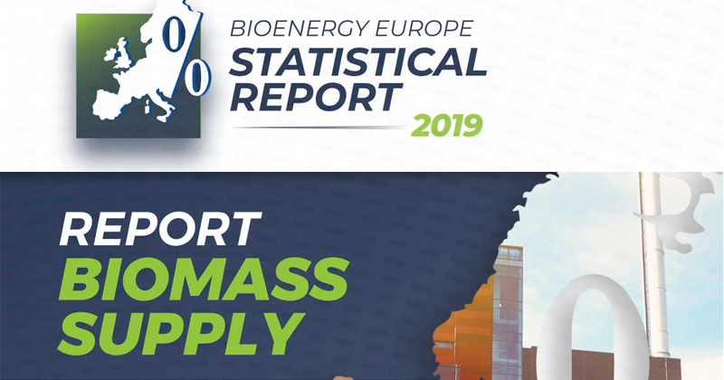 Biomass Supply. Bioenergy Europe Statistical Report 2019
