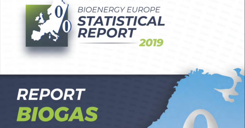 Biogas. Bioenergy Europe Statistical Report 2019