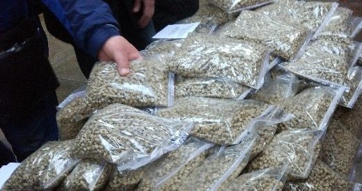 Straw pellets boilers Avers in Uman city