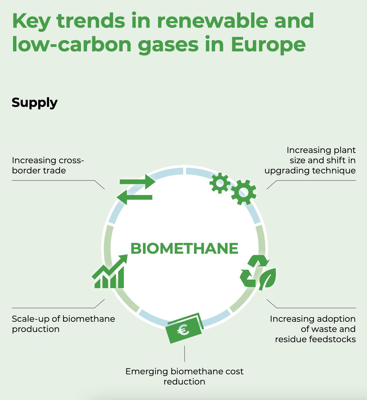 Main trends of EU biomethane development